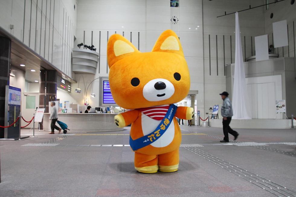 3月24日(日) 経堂コルティへあそびにいきます!