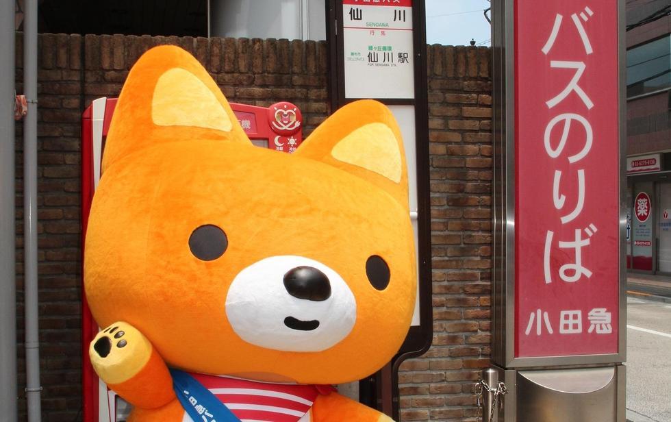 11/17 狛江市民まつりに参加します